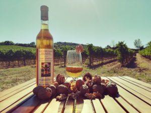 Regali Aziendali | Prodotti Toscana San Gimignano Vinsanto Doc