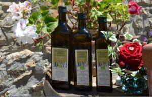 Regali Aziendali | Prodott Tipici Toscana Olio Extra Vergine Oliva Bio